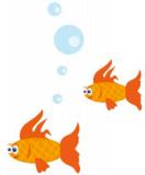 Blippit Social Fish